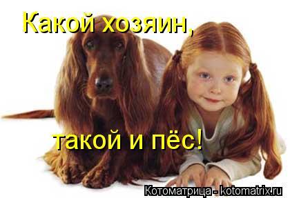 Котоматрица: Какой хозяин, такой и пёс!