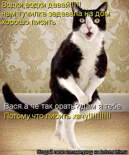 Котоматрица: Водки,водки давай!!!!! нам тучилка задавала на дом хорошо писить Вася.а чё так орать? дам я тебе Потому,что писить хачу!!!!!!!!!!
