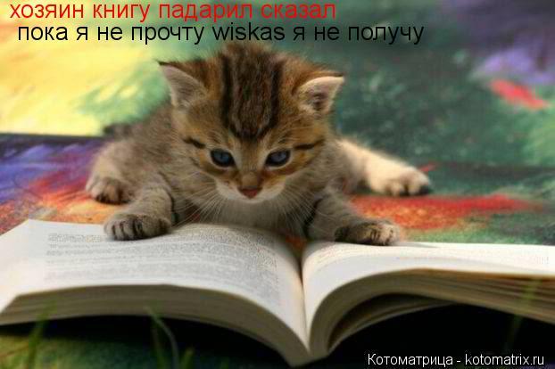 Котоматрица: хозяин книгу падарил сказал пока я не прочту wiskas я не получу