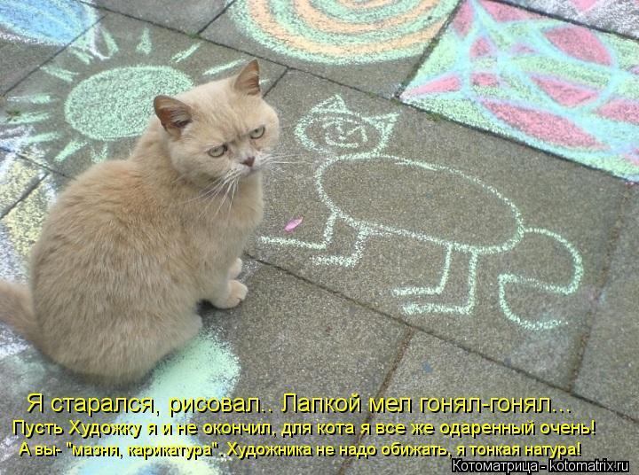 """Котоматрица: Я старался, рисовал.. Лапкой мел гонял-гонял...  Пусть Художку я и не окончил, для кота я все же одаренный очень! А вы- """"мазня, карикатура"""". Худож"""