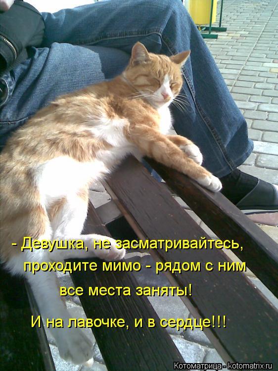 Котоматрица: - Девушка, не засматривайтесь, проходите мимо - рядом с ним все места заняты! И на лавочке, и в сердце!!!