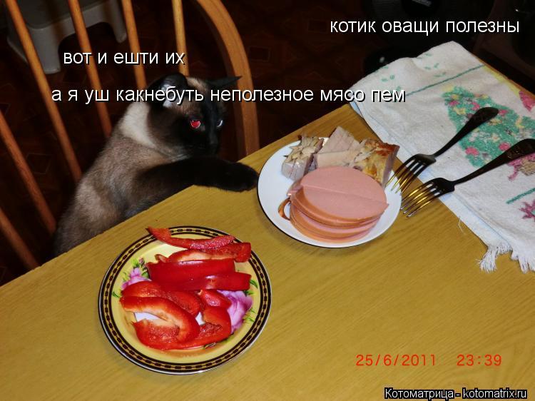 Котоматрица: котик оващи полезны  вот и ешти их а я уш какнебуть неполезное мясо пем а я уш какнебуть неполезное мясо пем