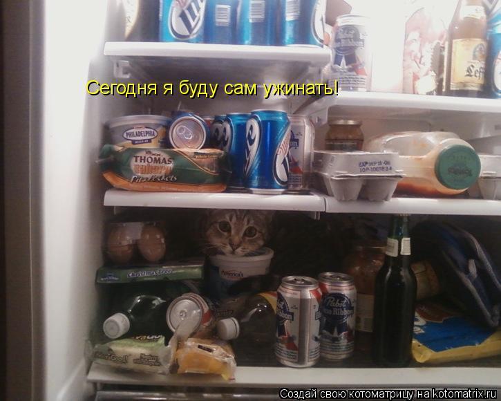 Котоматрица: Сегодня я буду сам ужинать!