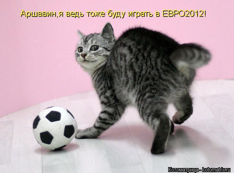Котоматрица: Аршавин,я ведь тоже буду играть в ЕВРО2012!