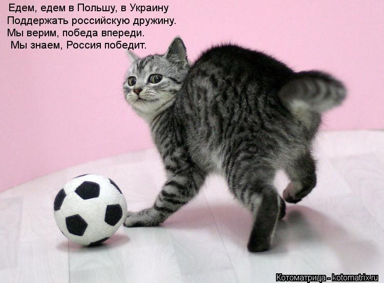 Котоматрица: Едем, едем в Польшу, в Украину Поддержать российскую дружину. Мы верим, победа впереди.   Мы знаем, Россия победит.