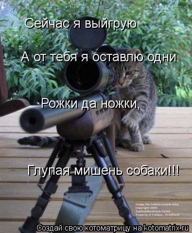 Котоматрица: Сейчас я выйгрую А от тебя я оставлю одни Рожки да ножки, Глупая мишень собаки!!!