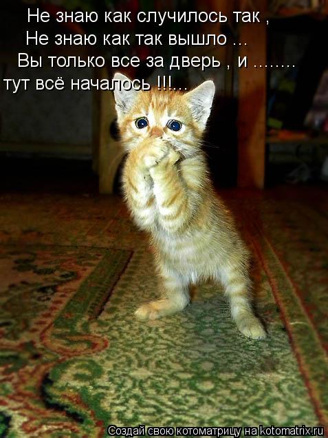 Котоматрица: Не знаю как случилось так , Не знаю как так вышло ... Вы только все за дверь , и ........ тут всё началось !!!...