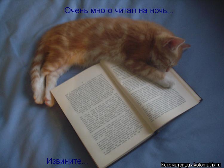 Котоматрица: Очень много читал на ночь... Извините...