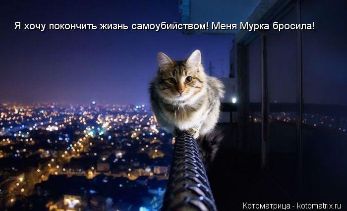 Котоматрица: Я хочу покончить жизнь самоубийством! Меня Мурка бросила!