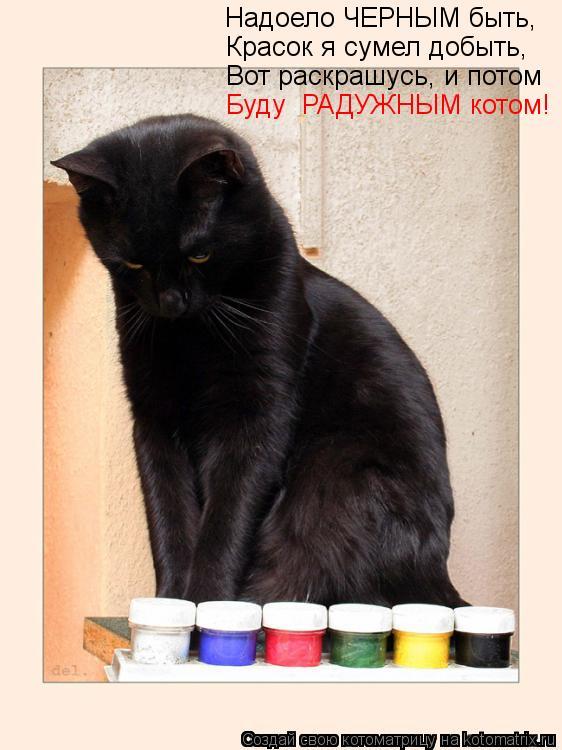 Котоматрица: Надоело ЧЕРНЫМ быть, Красок я сумел добыть, Вот раскрашусь, и потом Буду  РАДУЖНЫМ котом!
