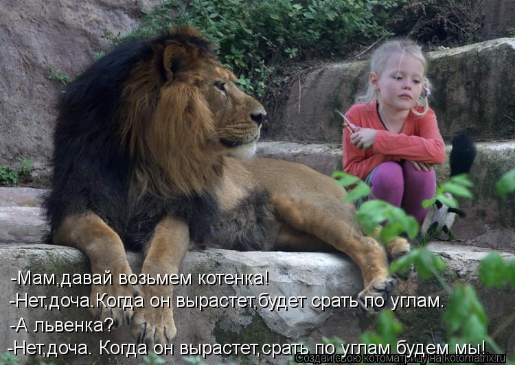 Котоматрица: -Нет,доча. Когда он вырастет,срать по углам будем мы! -А львенка? -Нет,доча.Когда он вырастет,будет срать по углам. -Мам,давай возьмем котенка!