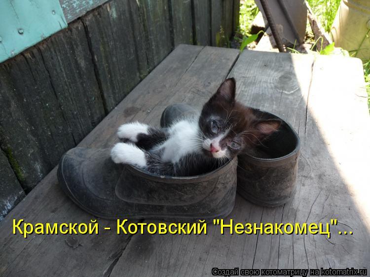 "Котоматрица: Крамской - Котовский ""Незнакомец""..."