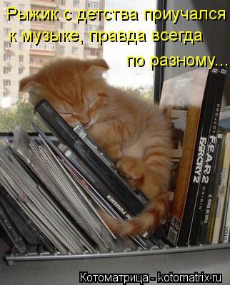 Котоматрица: Рыжик с детства приучался  к музыке, правда всегда по разному...