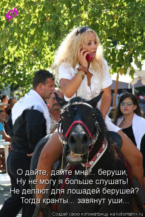 Котоматрица: О дайте, дайте мне... беруши, Ну не могу я больше слушать! Не делают для лошадей берушей? Тогда кранты... завянут уши...