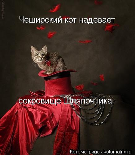 Котоматрица: Чеширский кот надевает сокровище Шляпочника