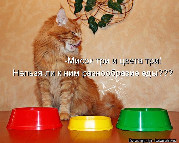 Котоматрица: -Мисок три и цвета три! Нельзя ли к ним разнообразие еды???