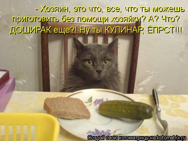Котоматрица: - Хозяин, это что, все, что ты можешь  приготовить без помощи хозяйки? А? Что?  ДОШИРАК еще?! Ну ты КУЛИНАР, ЁПРСТ!!!