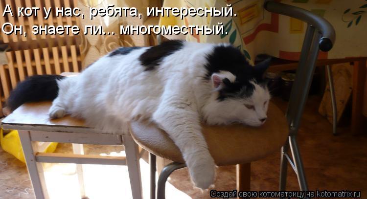 Котоматрица: А кот у нас, ребята, интересный. Он, знаете ли... многоместный.