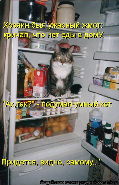 """Котоматрица: Хозяин был ужасный жмот: кричал, что нет еды в домУ. """"Ах,так?"""" - подумал умный кот. Придется, видно, самому..."""""""