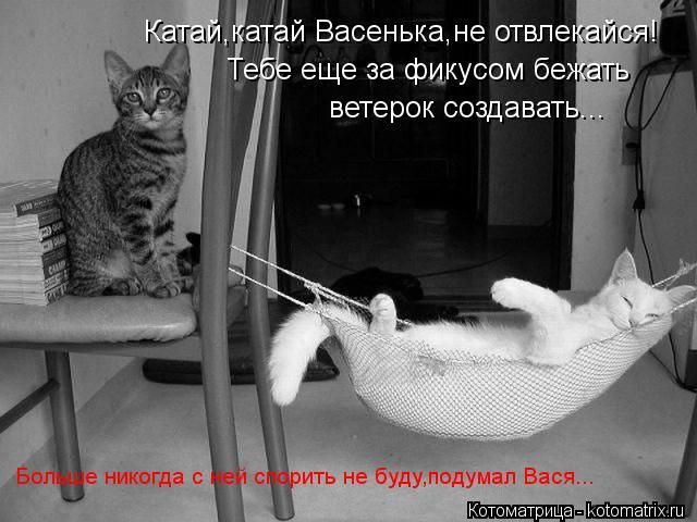 Котоматрица: Катай,катай Васенька,не отвлекайся! Тебе еще за фикусом бежать ветерок создавать... Больше никогда с ней спорить не буду,подумал Вася...