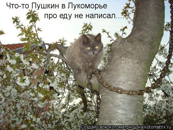 Котоматрица: Что-то Пушкин в Лукоморье про еду не написал....
