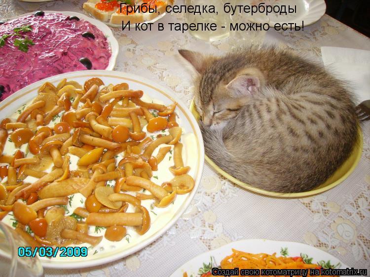 Селедка на ужин что приготовить