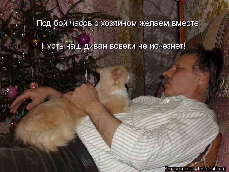 Котоматрица: Под бой часов с хозяином желаем вместе:  Пусть наш диван вовеки не исчезнет!