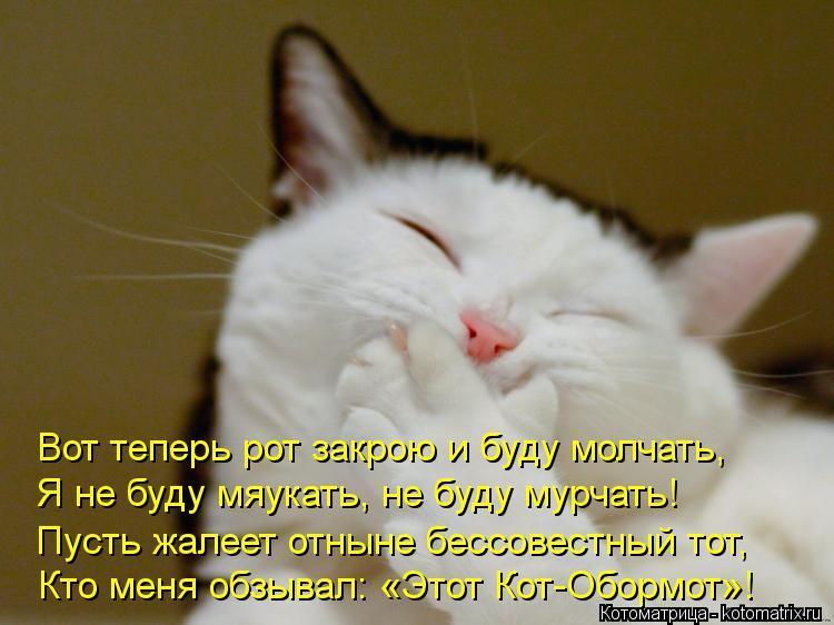 Котоматрица: Вот теперь рот закрою и буду молчать, Я не буду мяукать, не буду мурчать! Пусть жалеет отныне бессовестный тот, Кто меня обзывал: «Этот Кот-Об
