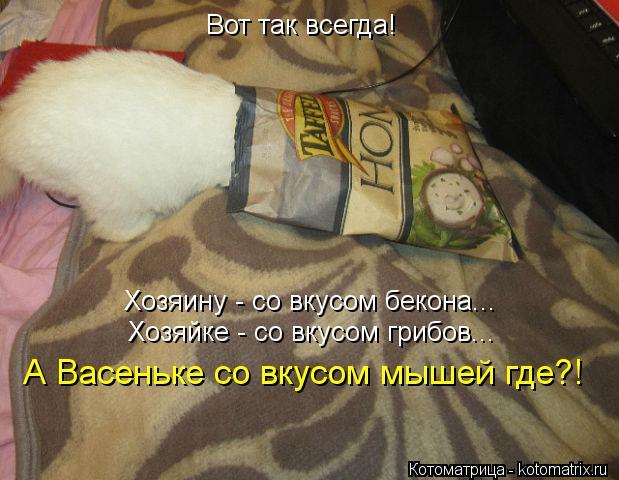 Котоматрица: Вот так всегда!  Хозяину - со вкусом бекона... Хозяйке - со вкусом грибов... А Васеньке со вкусом мышей где?!