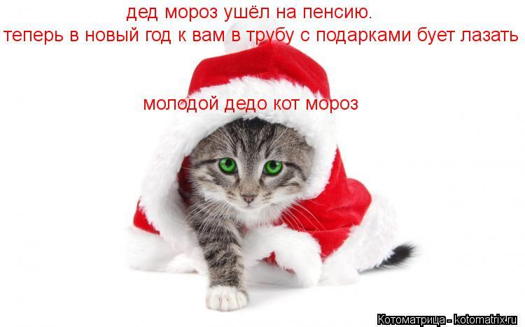 Котоматрица: дед мороз ушёл на пенсию. теперь в новый год к вам в трубу с подарками бует лазать  молодой дедо кот мороз
