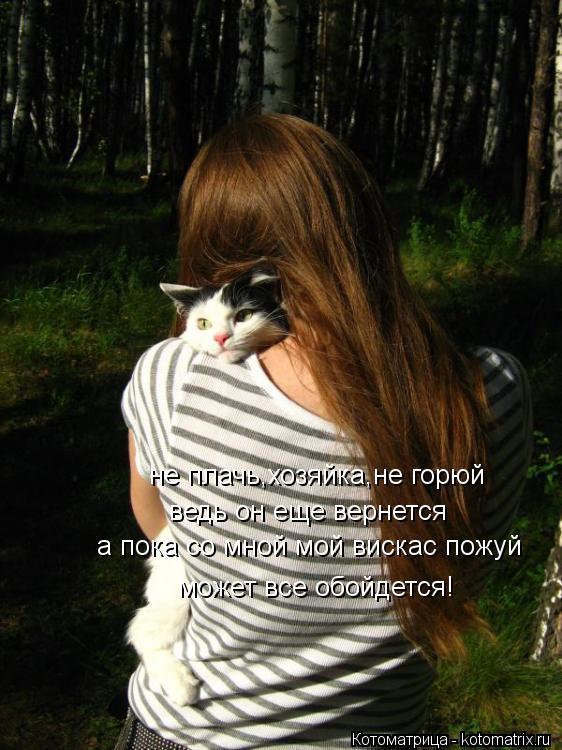 Котоматрица: не плачь,хозяйка,не горюй ведь он еще вернется а пока со мной мой вискас пожуй может все обойдется!