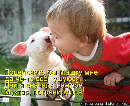 Котоматрица: Поцеловать бы Машку мне, да чё-то всё тушуюся... Дай я сначала на тебе, Мухтар, потренируюся!