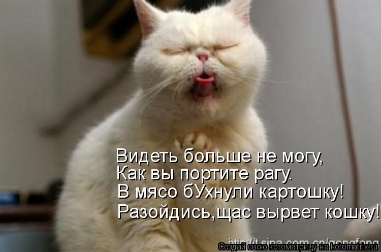 Котоматрица: Видеть больше не могу, Как вы портите рагу. В мясо бУхнули картошку! Разойдись,щас вырвет кошку!