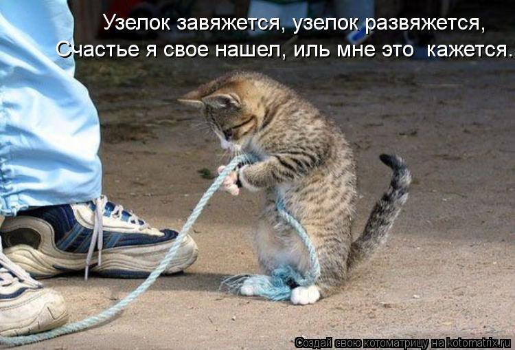 Котоматрица: Узелок завяжется, узелок развяжется, Счастье я свое нашел, иль мне это  кажется.