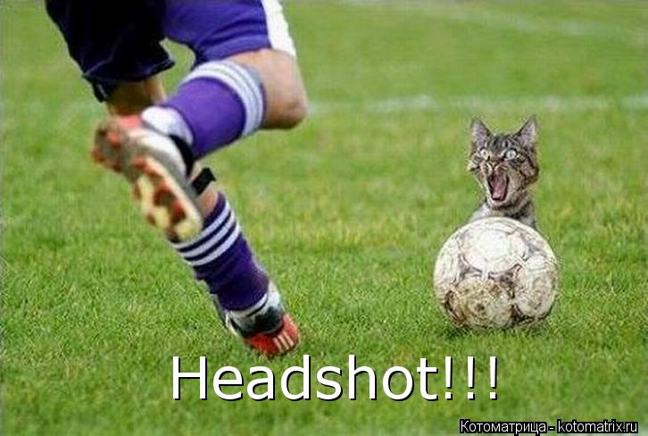 Котоматрица: Headshot!!!