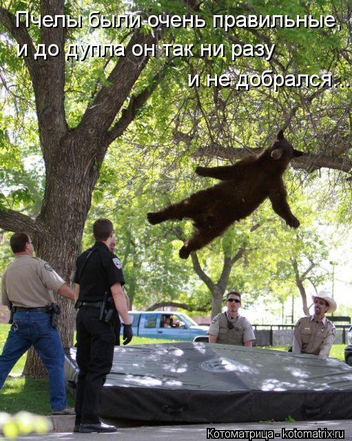 Смотреть как нужно прыгать на члене 11 фотография