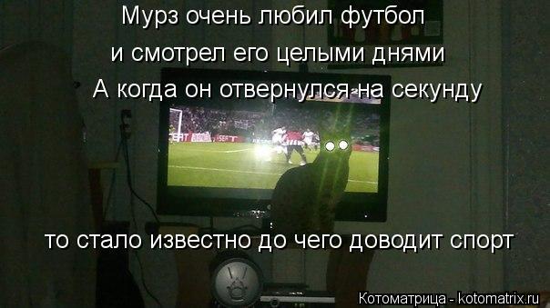 Котоматрица: Мурз очень любил футбол  и смотрел его целыми днями  А когда он отвернулся на секунду то стало известно до чего доводит спорт
