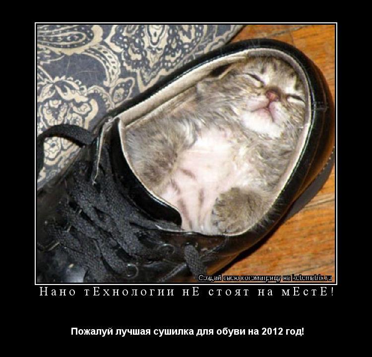 Котоматрица: Нано тeхнологии нe стоят на мeстe!  Пожалуй лучшая сушилка для обуви на 2012 год!