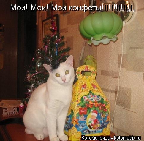 Котоматрица: Мои! Мои! Мои конфеты!!!!!!!!!!!!!