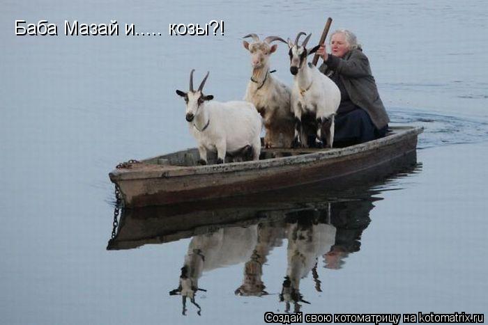 Котоматрица: Баба Мазай и..... козы?!