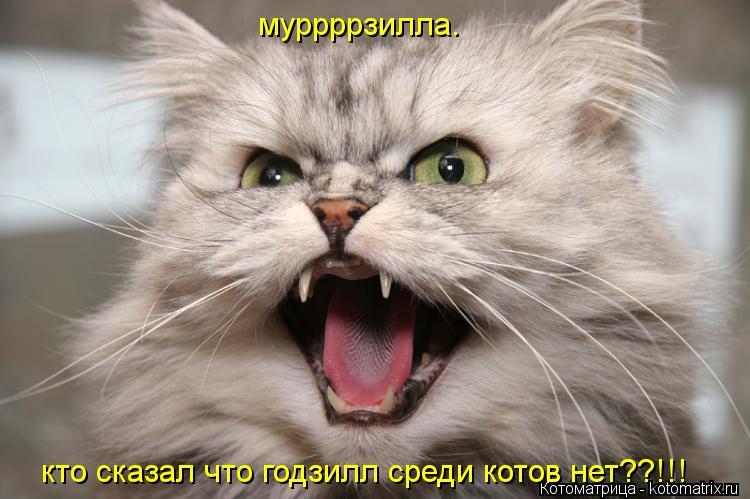 Котоматрица: муррррзилла. кто сказал что годзилл среди котов нет??!!!