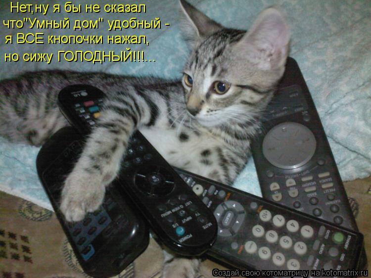 """Котоматрица: Нет,ну я бы не сказал что""""Умный дом"""" удобный - я ВСЕ кнопочки нажал, но сижу ГОЛОДНЫЙ!!!..."""