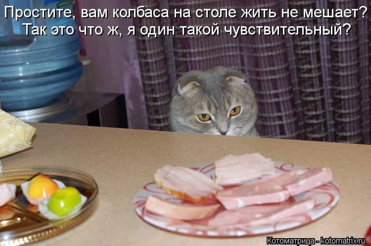 Котоматрица: Простите, вам колбаса на столе жить не мешает? Так это что ж, я один такой чувствительный?