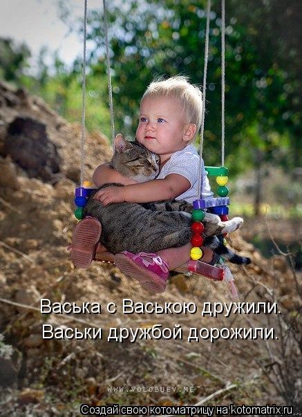 Котоматрица: Васька с Ваською дружили. Васьки дружбой дорожили.