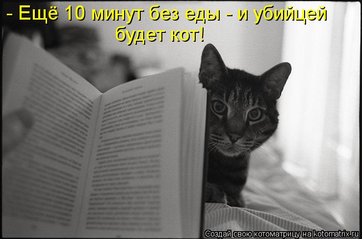 Котоматрица: - Ещё 10 минут без еды - и убийцей будет кот!