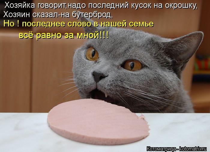 Котоматрица: Хозяйка говорит,надо последний кусок на окрошку, Хозяин сказал-на бутерброд, Но ! последнее слово в нашей семье всё равно за мной!!!