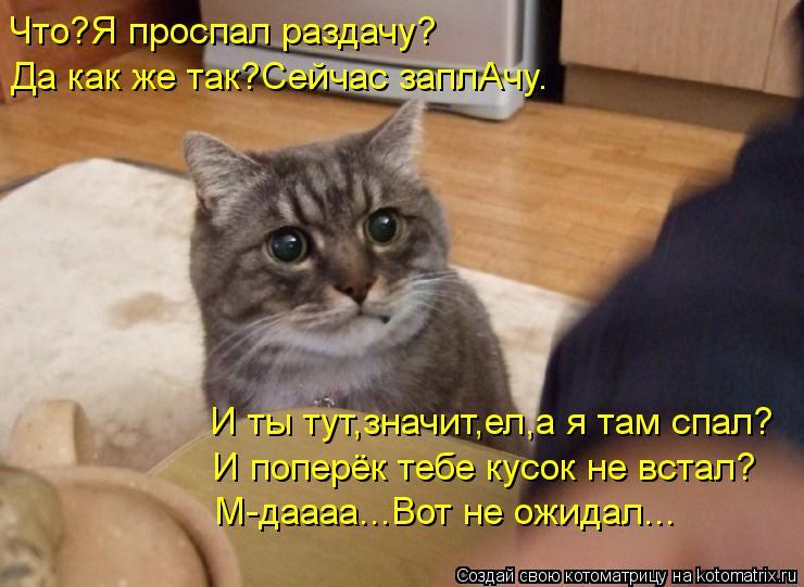 Котоматрица: Что?Я проспал раздачу? Да как же так?Сейчас заплАчу. И ты тут,значит,ел,а я там спал? И поперёк тебе кусок не встал? М-даааа...Вот не ожидал...