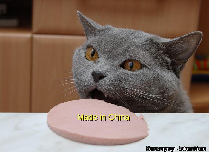 Котоматрица: Made in China