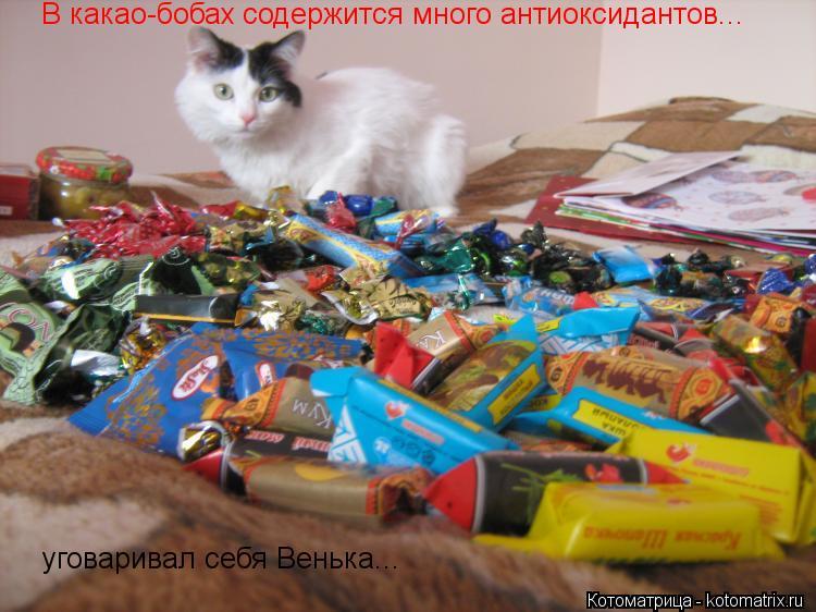 Котоматрица: В какао-бобах содержится много антиоксидантов... уговаривал себя Венька...