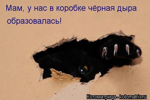 Котоматрица: Мам, у нас в коробке чёрная дыра  образовалась!